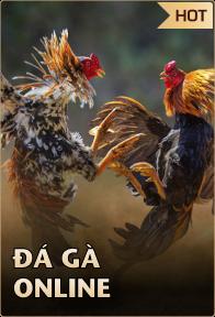 Đá gà online